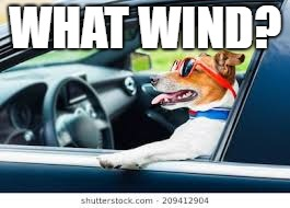 WHAT WIND? | made w/ Imgflip meme maker