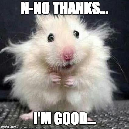 Stressed Mouse | N-NO THANKS... I'M GOOD... | image tagged in stressed mouse | made w/ Imgflip meme maker