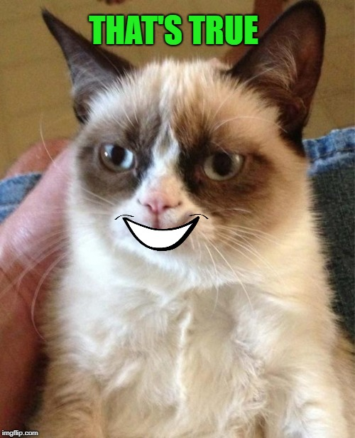 Grumpy/Happy Cat | THAT'S TRUE | image tagged in grumpy/happy cat | made w/ Imgflip meme maker