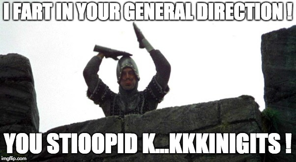 Stioopid kinigits | I FART IN YOUR GENERAL DIRECTION ! YOU STIOOPID K...KKKINIGITS ! | image tagged in monty python and the holy grail | made w/ Imgflip meme maker
