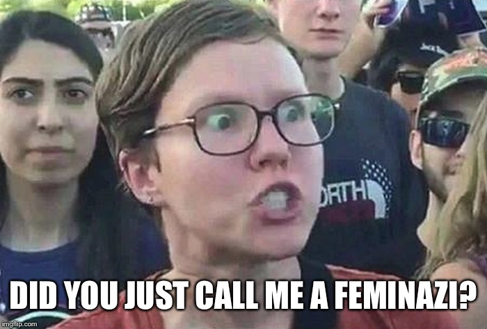 Triggered Liberal | DID YOU JUST CALL ME A FEMINAZI? | image tagged in triggered liberal | made w/ Imgflip meme maker