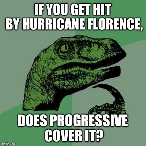 Hurricane Flo from Progressive | IF YOU GET HIT BY HURRICANE FLORENCE, DOES PROGRESSIVE COVER IT? | image tagged in memes,philosoraptor,flo from progressive,hurricane,bad joke,flood | made w/ Imgflip meme maker