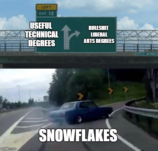 Left Exit 12 Off Ramp Meme | USEFUL TECHNICAL DEGREES BULLSHIT LIBERAL ARTS DEGREES SNOWFLAKES | image tagged in memes,left exit 12 off ramp | made w/ Imgflip meme maker