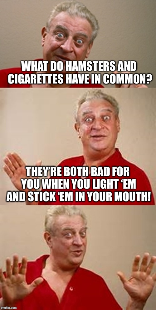 He's not wrong... | WHAT DO HAMSTERS AND CIGARETTES HAVE IN COMMON? THEY'RE BOTH BAD FOR YOU WHEN YOU LIGHT 'EM AND STICK 'EM IN YOUR MOUTH! | image tagged in bad pun dangerfield,funny,memes,bad things are bad,i dont think you should do that,oh no | made w/ Imgflip meme maker