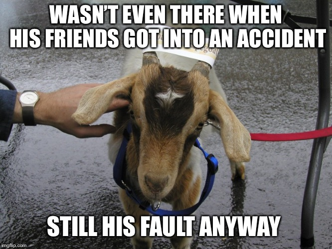 Sinbad the Scapegoat  | WASN'T EVEN THERE WHEN HIS FRIENDS GOT INTO AN ACCIDENT STILL HIS FAULT ANYWAY | image tagged in sinbad the scapegoat | made w/ Imgflip meme maker