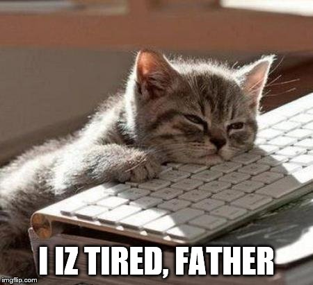 tired cat | I IZ TIRED, FATHER | image tagged in tired cat | made w/ Imgflip meme maker