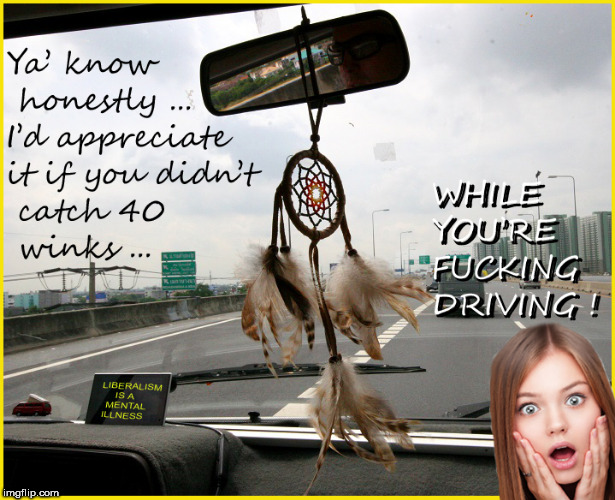 C;mon, when you see a DREAM CATCHER in a car....you think this too ...right ? | image tagged in deam catcher,lol so funny,funny memes,hilarious,so true memes,liberal logic | made w/ Imgflip meme maker