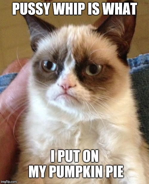 Grumpy Cat Meme | PUSSY WHIP IS WHAT I PUT ON MY PUMPKIN PIE | image tagged in memes,grumpy cat | made w/ Imgflip meme maker