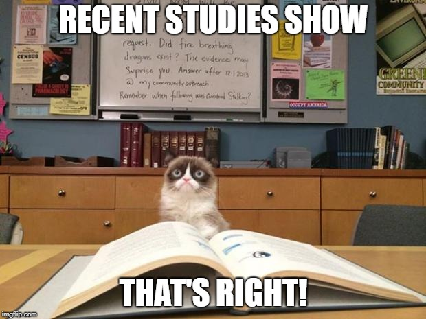 Grumpy cat studying | RECENT STUDIES SHOW THAT'S RIGHT! | image tagged in grumpy cat studying | made w/ Imgflip meme maker