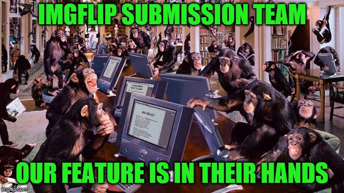 planet of the flippers |  IMGFLIP SUBMISSION TEAM; OUR FEATURE IS IN THEIR HANDS | image tagged in mean while on imgflip,submissions,imgflip news,funny because it's true | made w/ Imgflip meme maker