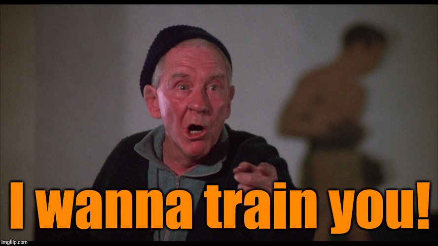 Rocky Mickey | I wanna train you! | image tagged in rocky mickey | made w/ Imgflip meme maker
