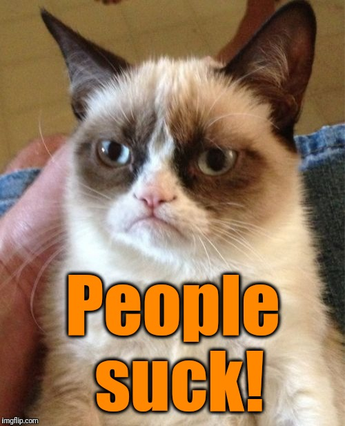 Grumpy Cat Meme | People suck! | image tagged in memes,grumpy cat | made w/ Imgflip meme maker