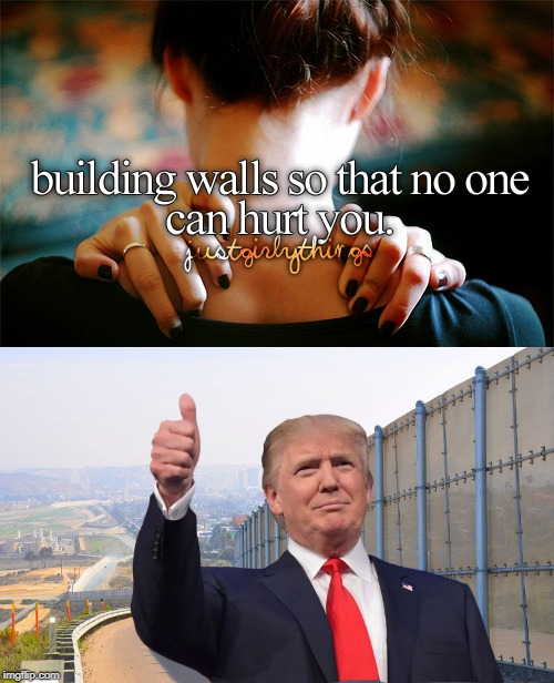 we are going to build a great wall | image tagged in trump,justgirlythings,wall,america | made w/ Imgflip meme maker