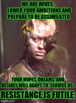 Marriage Assimilation  | WE ARE WIVES. LOWER YOUR AMBITIONS AND PREPARE TO BE ASSIMILATED YOUR HOPES, DREAMS, AND DESIRES WILL ADAPT TO SERVICE US. RESISTANCE IS  | image tagged in marriage,borg,wife,wedding,single,future | made w/ Imgflip meme maker