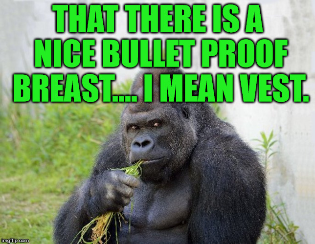 THAT THERE IS A NICE BULLET PROOF BREAST.... I MEAN VEST. | image tagged in sexy monkey memes gorilla | made w/ Imgflip meme maker