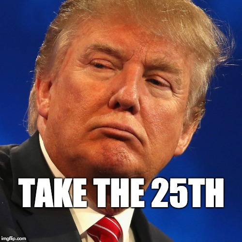 Take the 25th |  TAKE THE 25TH | image tagged in donald trump,trump,25th amendment | made w/ Imgflip meme maker