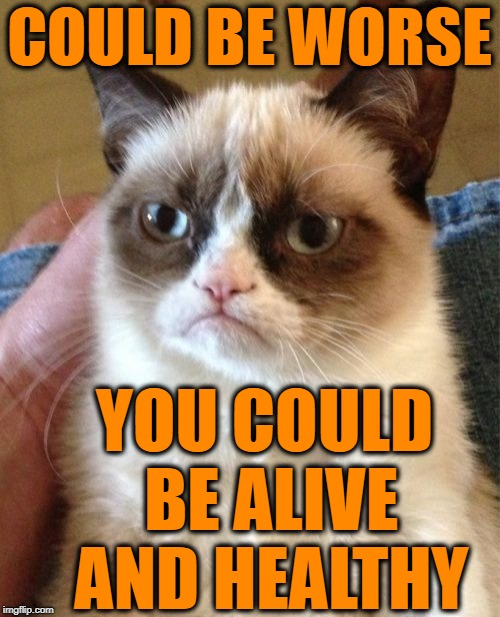 Grumpy Cat Meme | COULD BE WORSE YOU COULD BE ALIVE AND HEALTHY | image tagged in memes,grumpy cat | made w/ Imgflip meme maker