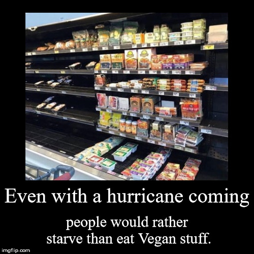Even with a hurricane coming | people would rather starve than eat Vegan stuff. | image tagged in funny,demotivationals | made w/ Imgflip demotivational maker