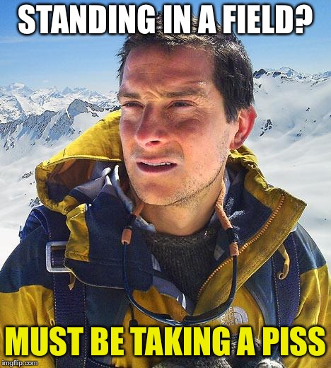 Bear Grylls Meme | STANDING IN A FIELD? MUST BE TAKING A PISS | image tagged in memes,bear grylls | made w/ Imgflip meme maker