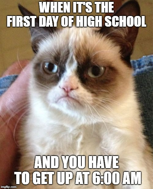 Grumpy Cat Meme | WHEN IT'S THE FIRST DAY OF HIGH SCHOOL AND YOU HAVE TO GET UP AT 6:00 AM | image tagged in memes,grumpy cat | made w/ Imgflip meme maker