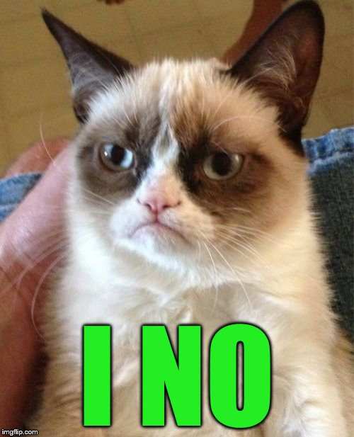 Grumpy Cat Meme | I NO | image tagged in memes,grumpy cat | made w/ Imgflip meme maker