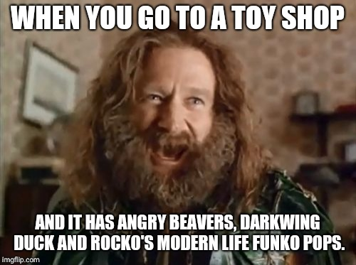 Are the kids buying them for their parents, or what? | WHEN YOU GO TO A TOY SHOP AND IT HAS ANGRY BEAVERS, DARKWING DUCK AND ROCKO'S MODERN LIFE FUNKO POPS. | image tagged in memes,what year is it,90s,90s kids,cartoons,toys | made w/ Imgflip meme maker