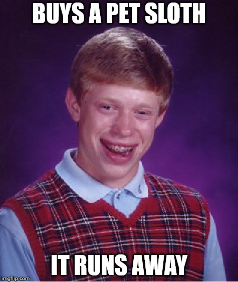 Bad Luck Brian Meme | BUYS A PET SLOTH IT RUNS AWAY | image tagged in memes,bad luck brian | made w/ Imgflip meme maker