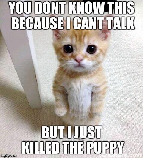 Cute Cat Meme | YOU DONT KNOW THIS BECAUSE I CANT TALK BUT I JUST KILLED THE PUPPY | image tagged in memes,cute cat | made w/ Imgflip meme maker