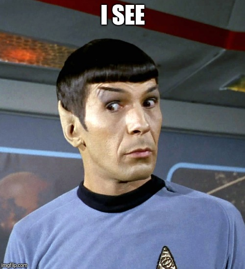 spock eyebrow | I SEE | image tagged in spock eyebrow | made w/ Imgflip meme maker