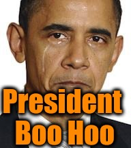 Obama crying | President Boo Hoo | image tagged in obama crying | made w/ Imgflip meme maker