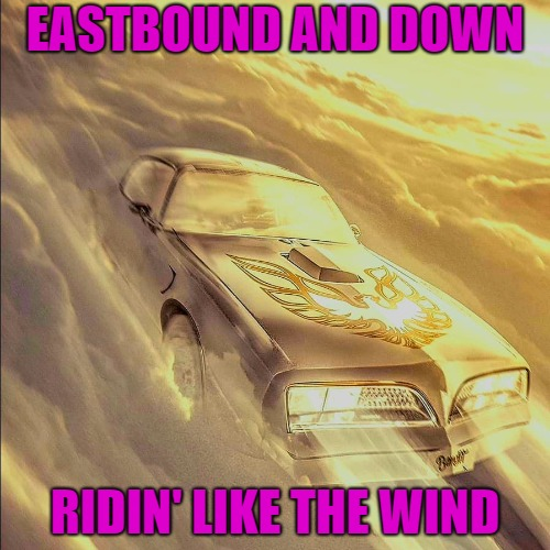 When you get to Heaven the real fun begins!!! | EASTBOUND AND DOWN RIDIN' LIKE THE WIND | image tagged in bandit in heaven,memes,eastbound and down,ride like the wind,rip,heaven | made w/ Imgflip meme maker