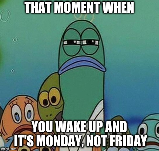 SpongeBob | THAT MOMENT WHEN YOU WAKE UP AND IT'S MONDAY, NOT FRIDAY | image tagged in spongebob | made w/ Imgflip meme maker
