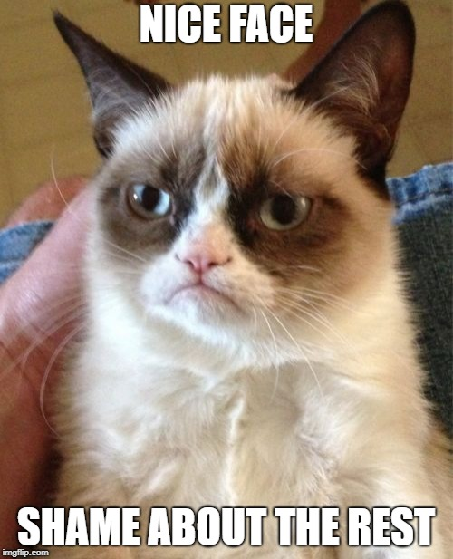 Grumpy Cat Meme | NICE FACE SHAME ABOUT THE REST | image tagged in memes,grumpy cat | made w/ Imgflip meme maker