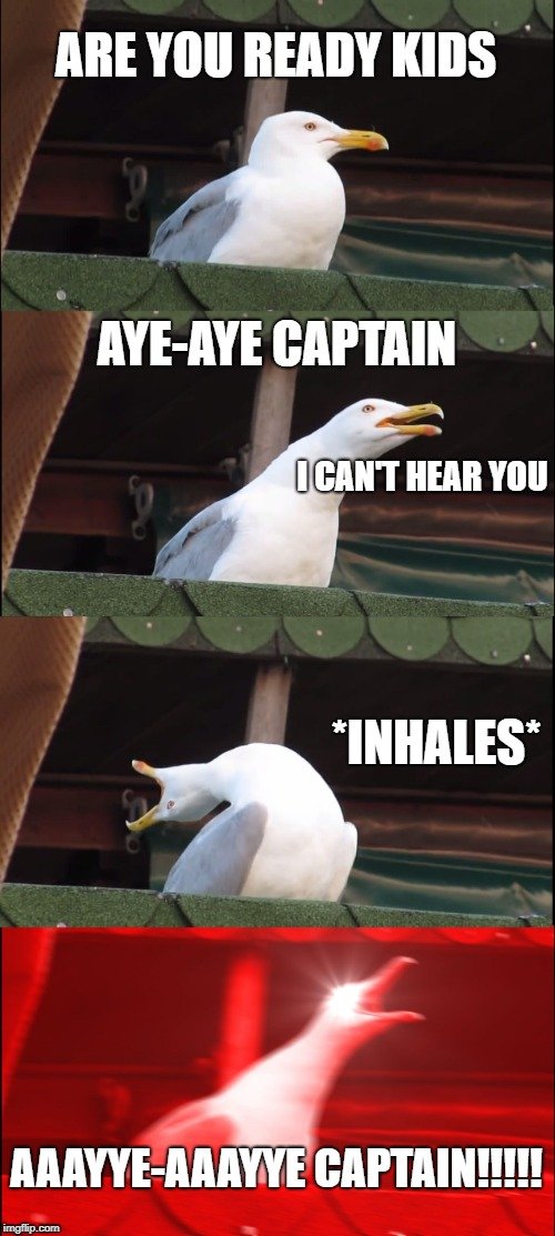 Inhaling Seagull Meme | ARE YOU READY KIDS AYE-AYE CAPTAIN *INHALES* AAAYYE-AAAYYE CAPTAIN!!!!! I CAN'T HEAR YOU | image tagged in memes,inhaling seagull | made w/ Imgflip meme maker