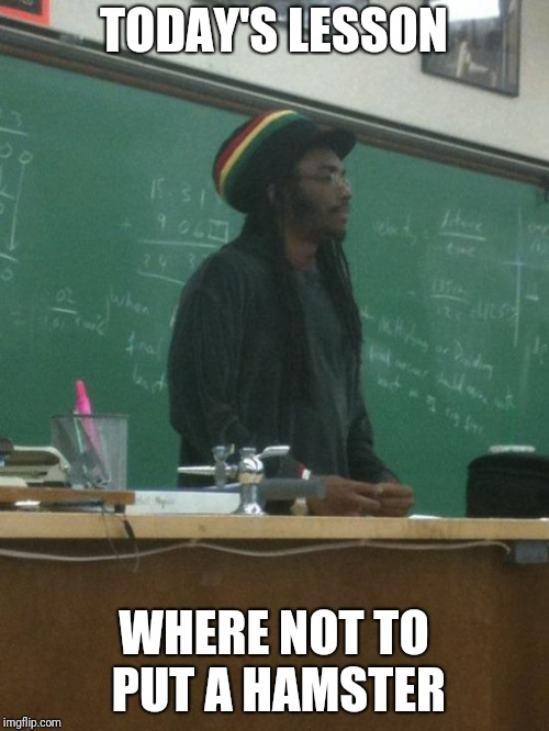 Rasta Science Teacher Meme | TODAY'S LESSON WHERE NOT TO PUT A HAMSTER | image tagged in memes,rasta science teacher | made w/ Imgflip meme maker