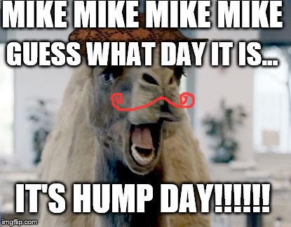 Geico camel hump day | MIKE MIKE MIKE MIKE GUESS WHAT DAY IT IS... IT'S HUMP DAY!!!!!! | image tagged in geico camel hump day,scumbag | made w/ Imgflip meme maker