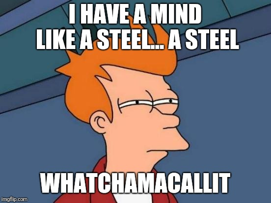Futurama Fry Meme | I HAVE A MIND LIKE A STEEL... A STEEL WHATCHAMACALLIT | image tagged in memes,futurama fry | made w/ Imgflip meme maker