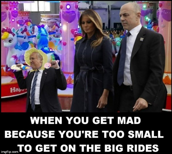 image tagged in baby,trump baby,melania trump,fist pump baby,amusement park,donald trump the clown | made w/ Imgflip meme maker