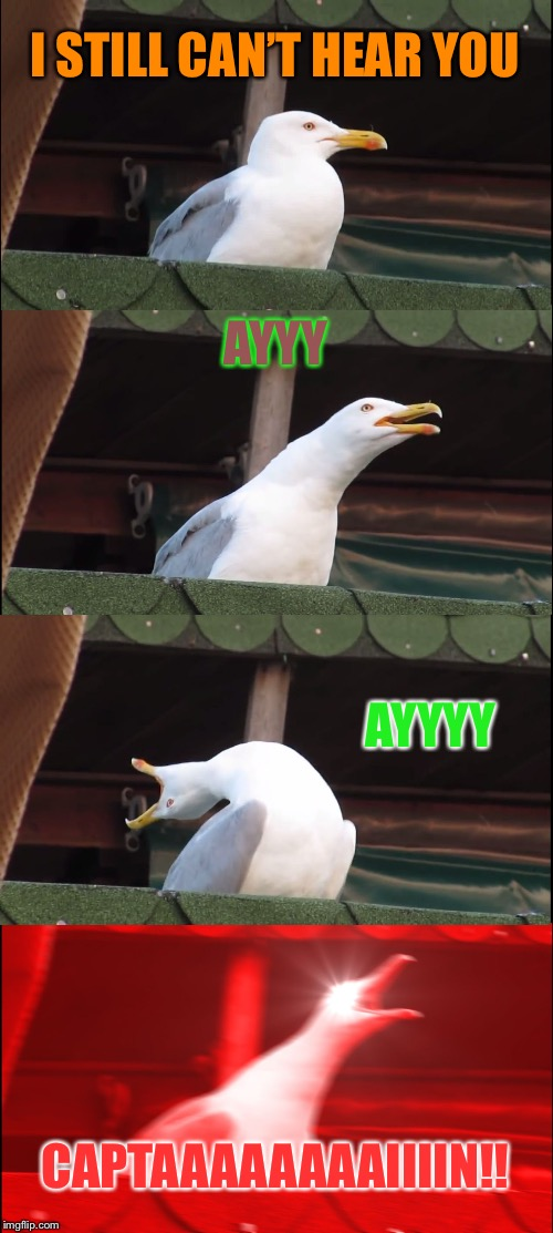Inhaling Seagull Meme | I STILL CAN'T HEAR YOU AYYY AYYYY CAPTAAAAAAAAIIIIN!! | image tagged in memes,inhaling seagull | made w/ Imgflip meme maker
