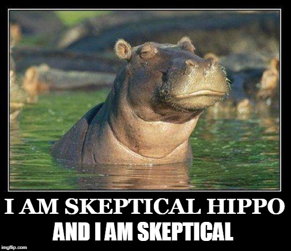 There are Those of the Animal Kingdom who Need Monocles  | I AM SKEPTICAL HIPPO AND I AM SKEPTICAL | image tagged in vince vance,hippopotamus,hippos,skepticism is healthy,skeptics,remain skeptical | made w/ Imgflip meme maker