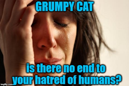 First World Problems Meme | GRUMPY CAT is there no end to your hatred of humans? | image tagged in memes,first world problems | made w/ Imgflip meme maker