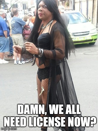 pissy transvestite | DAMN, WE ALL NEED LICENSE NOW? | image tagged in pissy transvestite | made w/ Imgflip meme maker