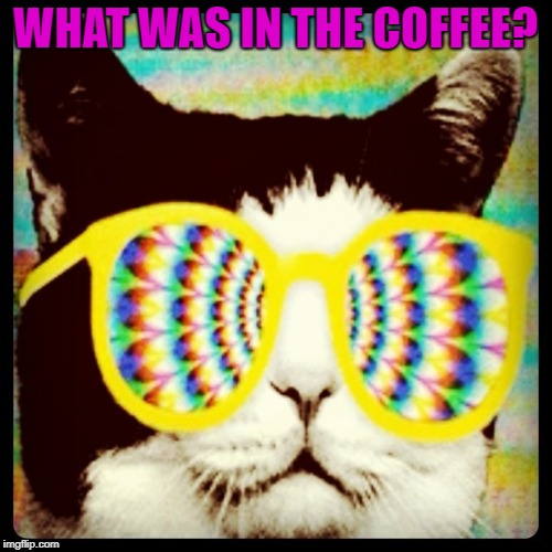 WHAT WAS IN THE COFFEE? | made w/ Imgflip meme maker