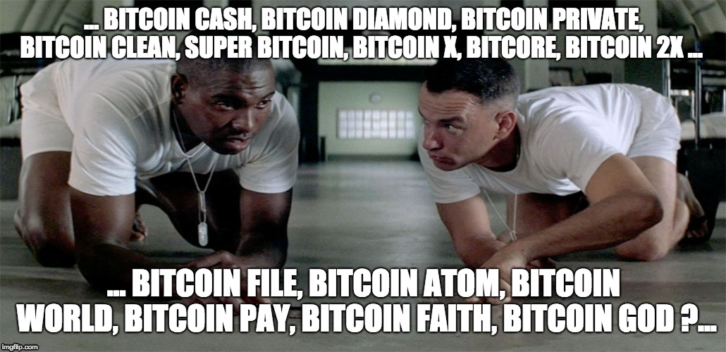 Bitcoin Spring Cleaning | ... BITCOIN CASH, BITCOIN DIAMOND, BITCOIN PRIVATE, BITCOIN CLEAN, SUPER BITCOIN, BITCOIN X, BITCORE, BITCOIN 2X ... ... BITCOIN FILE, BITCO | image tagged in bitcoin | made w/ Imgflip meme maker