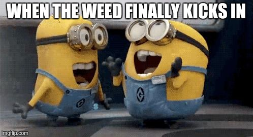 Excited Minions | WHEN THE WEED FINALLY KICKS IN | image tagged in memes,excited minions | made w/ Imgflip meme maker