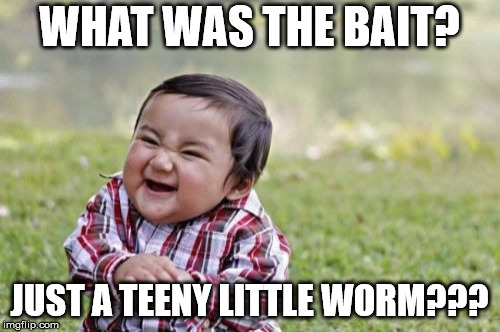 Evil Toddler Meme | WHAT WAS THE BAIT? JUST A TEENY LITTLE WORM??? | image tagged in memes,evil toddler | made w/ Imgflip meme maker
