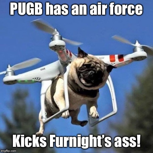 Settling the debate with a true dog fight | . | image tagged in memes,pug flying,pubg,fortnight,dog fight,spoof | made w/ Imgflip meme maker