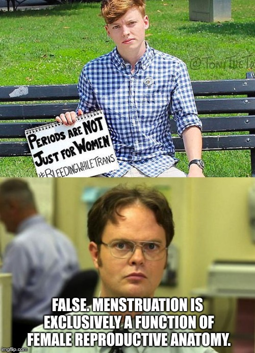 Menstruation is exclusively a function of female reproductive anatomy | FALSE. MENSTRUATION IS EXCLUSIVELY A FUNCTION OF FEMALE REPRODUCTIVE ANATOMY. | image tagged in sjw,transgender,bleeding,dwight schrute,gender | made w/ Imgflip meme maker