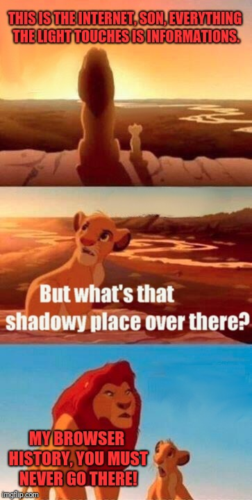 Simba Shadowy Place Meme | THIS IS THE INTERNET, SON, EVERYTHING THE LIGHT TOUCHES IS INFORMATIONS. MY BROWSER HISTORY, YOU MUST NEVER GO THERE! | image tagged in memes,simba shadowy place | made w/ Imgflip meme maker