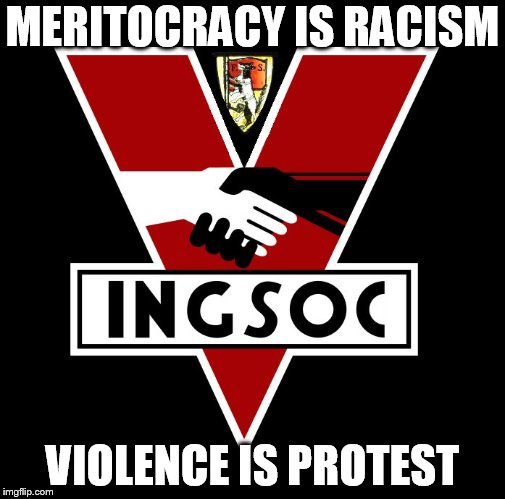MERITOCRACY IS RACISM VIOLENCE IS PROTEST | image tagged in ingsoc | made w/ Imgflip meme maker